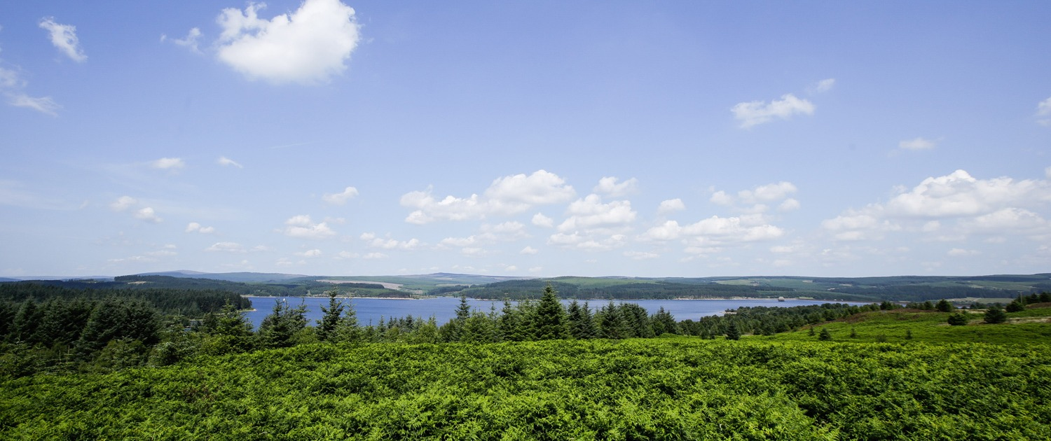 Northumberland-Self-Catering-Kielder-water-view