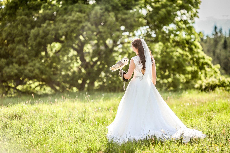 Country-Wedding-venue-bride-owl