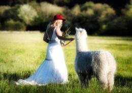 Reivers-Wedding-Venue-Bride-Alpca
